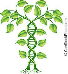 El concepto de la planta de ADN