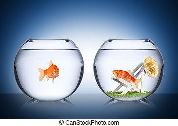 El concepto de las vacaciones de pescado