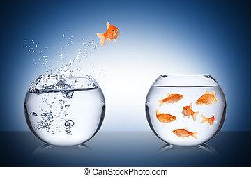 El concepto de retorno de los peces