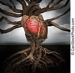 El concepto de salud del corazón humano