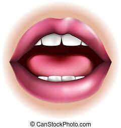El cuerpo bucal es parte ilustración
