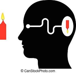 El diagrama muestra percepción visual en un humano