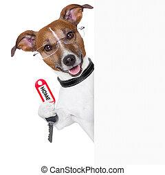 El dueño de un perro