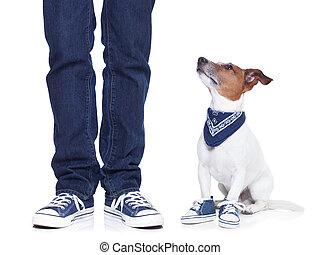 El dueño y el perro