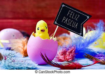 el emerger, feliz, español, pascua, texto, polluelo, huevo de pascua, feliz