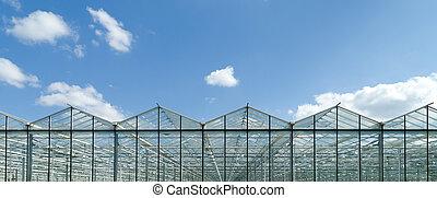 El exterior de Greenhouse