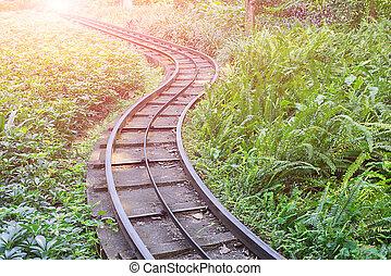 El ferrocarril en el parque