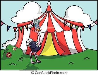 El festival de atracción del circo Ostritch