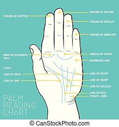 El gráfico de lectura de la palma. El mapa de la palma de la mano