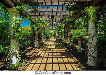 El Jardín Lattice camina con pavimentos de piedra y flores de liana a través del trabajo de Trellis