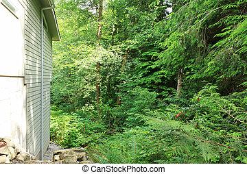 El lado de la casa de teh con el bosque verde detrás