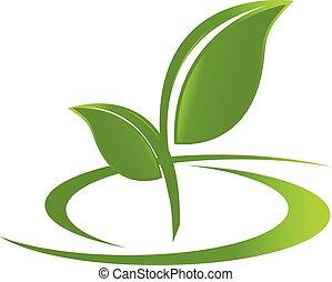El logo es la naturaleza de la salud