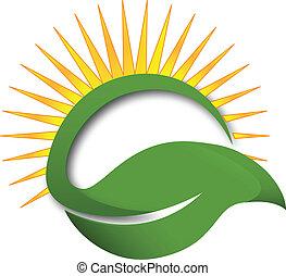 El logotipo de la hoja verde