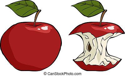 El núcleo de manzana