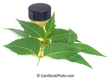 El neem medicinal se va con aceite esencial