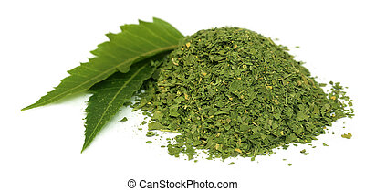 El neem medicinal se va con polvo seco