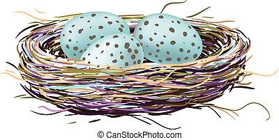 El nido de pájaro con huevos de petirrojo