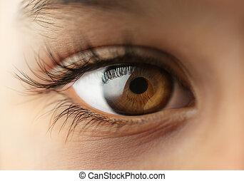 El ojo humano del niño - macro - cerca