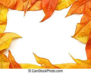 El otoño deja el marco