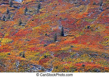 El otoño en la cima de la montaña
