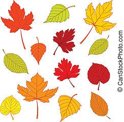 El otoño sale en blanco
