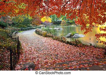 El otoño sale en el parque central de Nueva York
