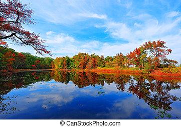 El otoño se refleja en un estanque cerca de la bahía de Chesapeake, Maryland