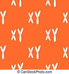 El patrón de cromosomas humanos no tiene forma