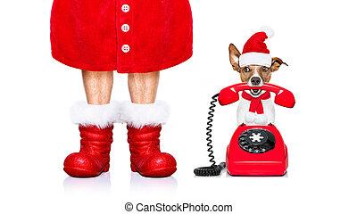 El perro de Santa Claus de Navidad al teléfono