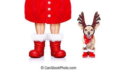 El perro de Santa Claus de Navidad
