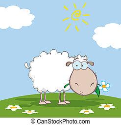 El personaje de las ovejas blancas