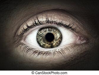 El primer plano de los ojos masculinos
