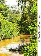 El río Amazonas es rico en ecuador