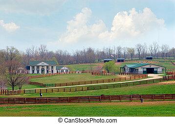 El rancho de caballos de Kentucky