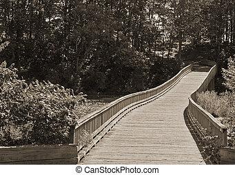 El sendero de madera