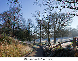 El sendero del campo en invierno