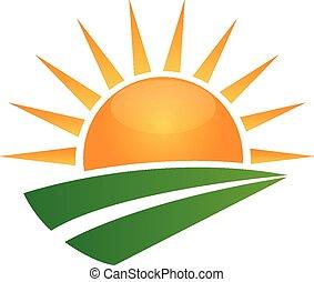 El sol y el logo de la carretera verde
