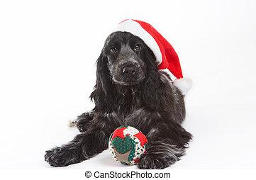 El sombrero de Navidad