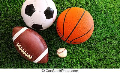 El surtido de pelotas deportivas sobre la hierba