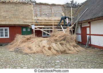 El techo de Thatch