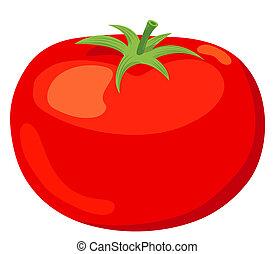 El tomate.
