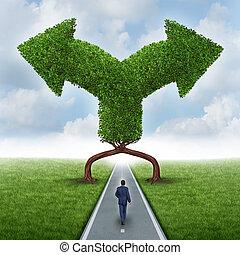Elección de dirección de crecimiento