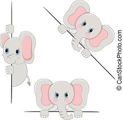 elefante, bebé, echar una ojeada, vario, posiciones, atrás