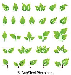 Elementos de diseño de hojas verdes