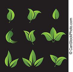 Elementos de hojas verdes