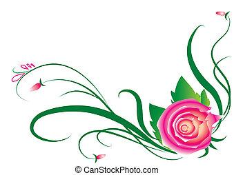 Elementos de rosas para diseño en blanco