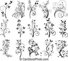 Elementos florales de vectores para el diseño