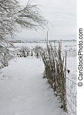 Empieza en la nieve