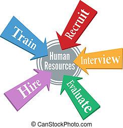 Empleado de recursos humanos contratando gente