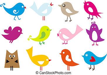 encantador, aves